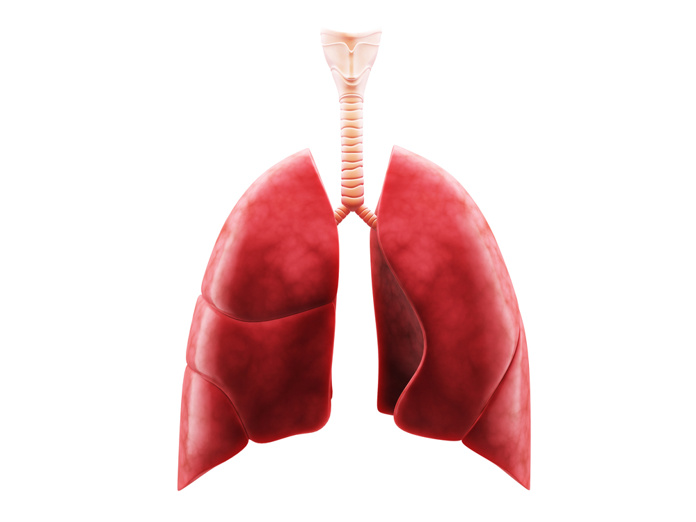New Review Offers Key Updates On European Cystic Fibrosis Market
