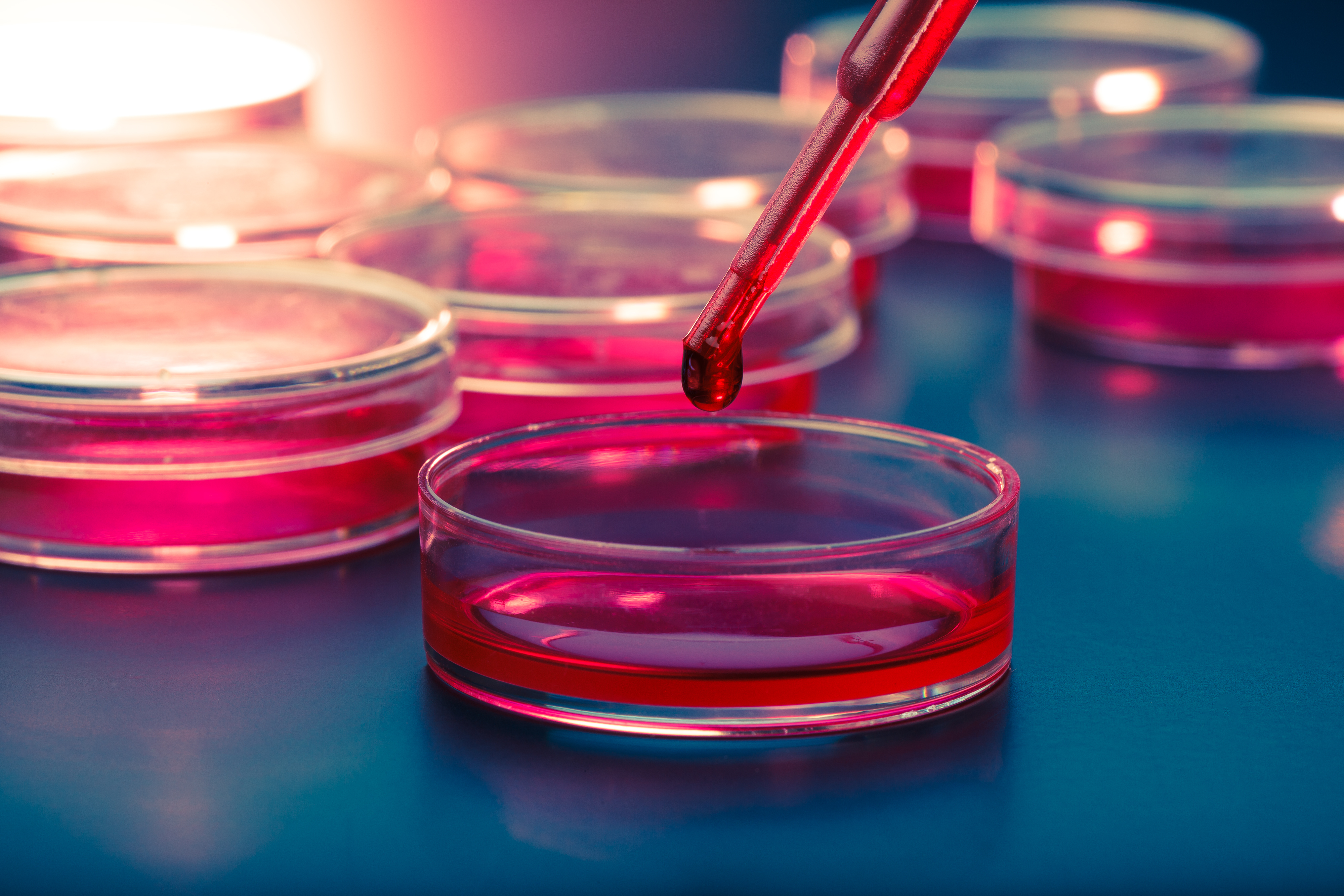 Protein Associated With Inflammation Surprisingly Repairs Common CF Mutation