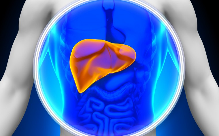 CF and liver disease