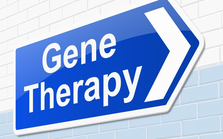Cystic fibrosis gene therapy