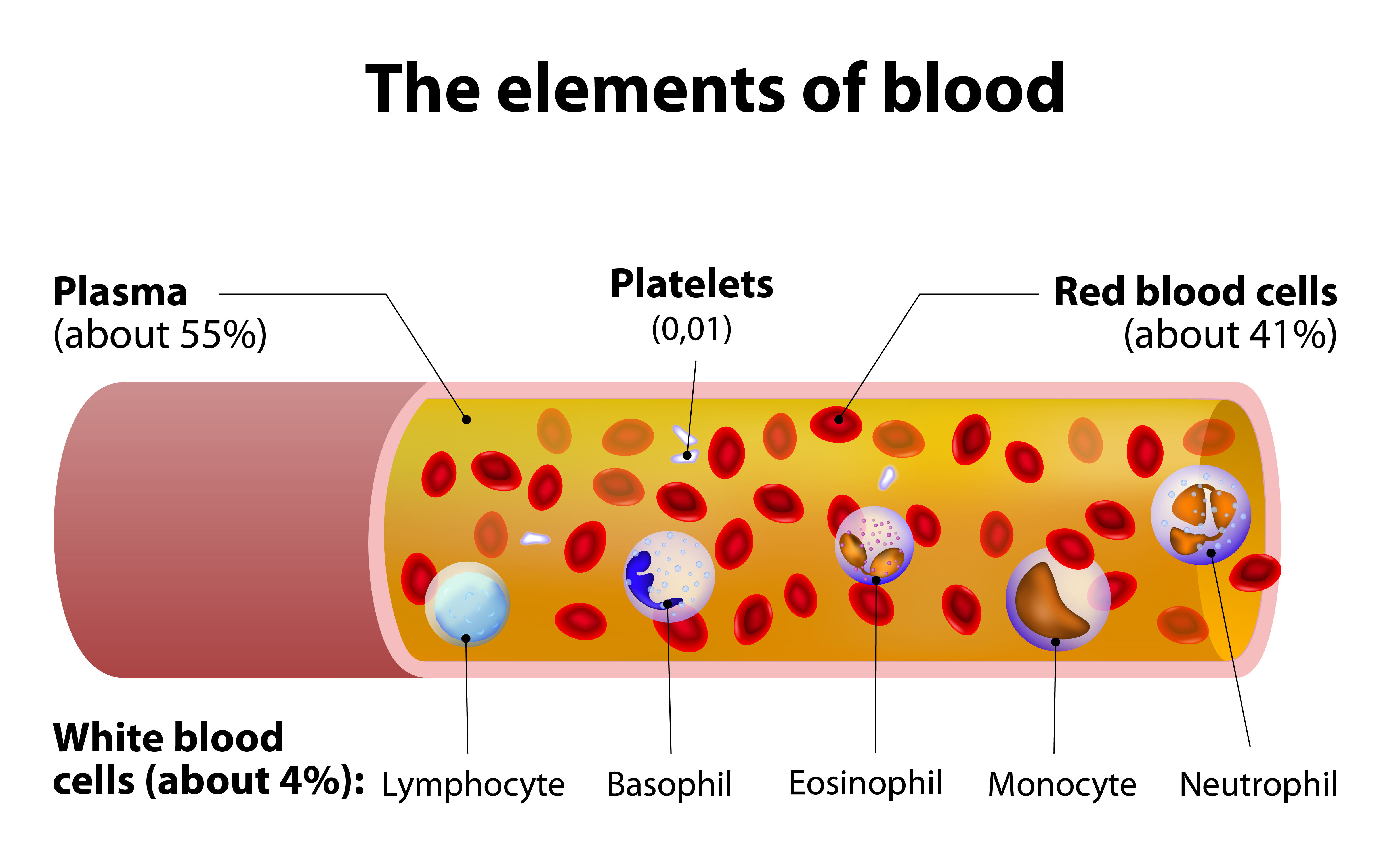 Blood Platelets Not Seen As Cause Of Inflammation In Cf