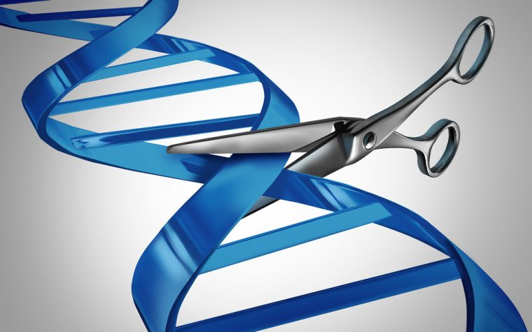 American Society of Gene & Cell Therapy Issues 'White Paper' Explaining, Supporting Treatment