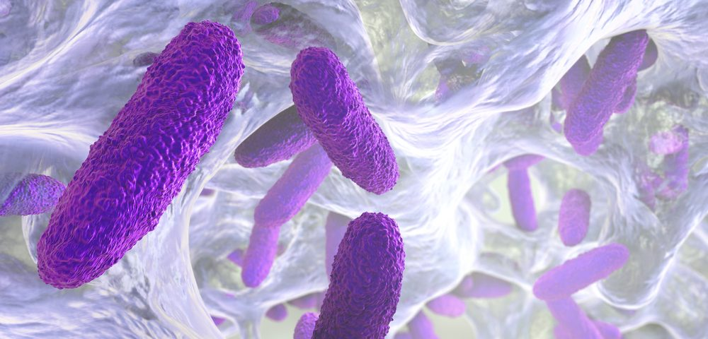 Discovery Could Help Cystic Fibrosis Patients Get Rid of Bacteria That Attack Their Lungs